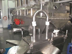 Chicken Seasoning Granulating Drying Machine